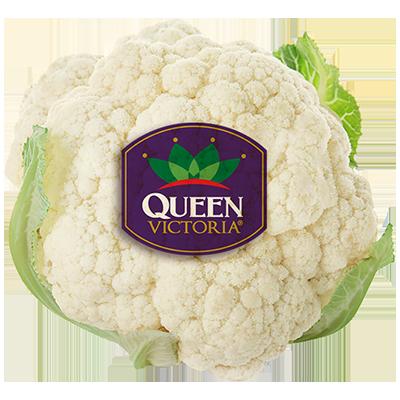 Cauliflower QV logo
