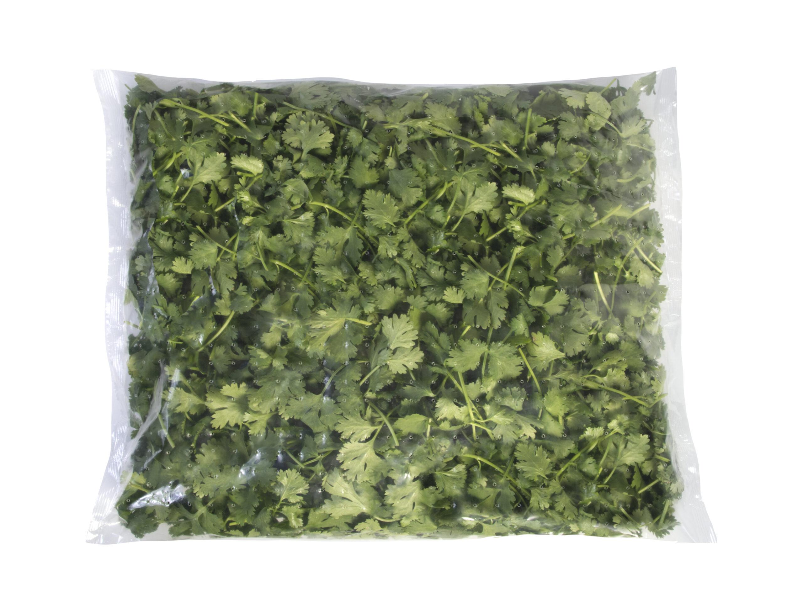 Cilantro bag foodservice