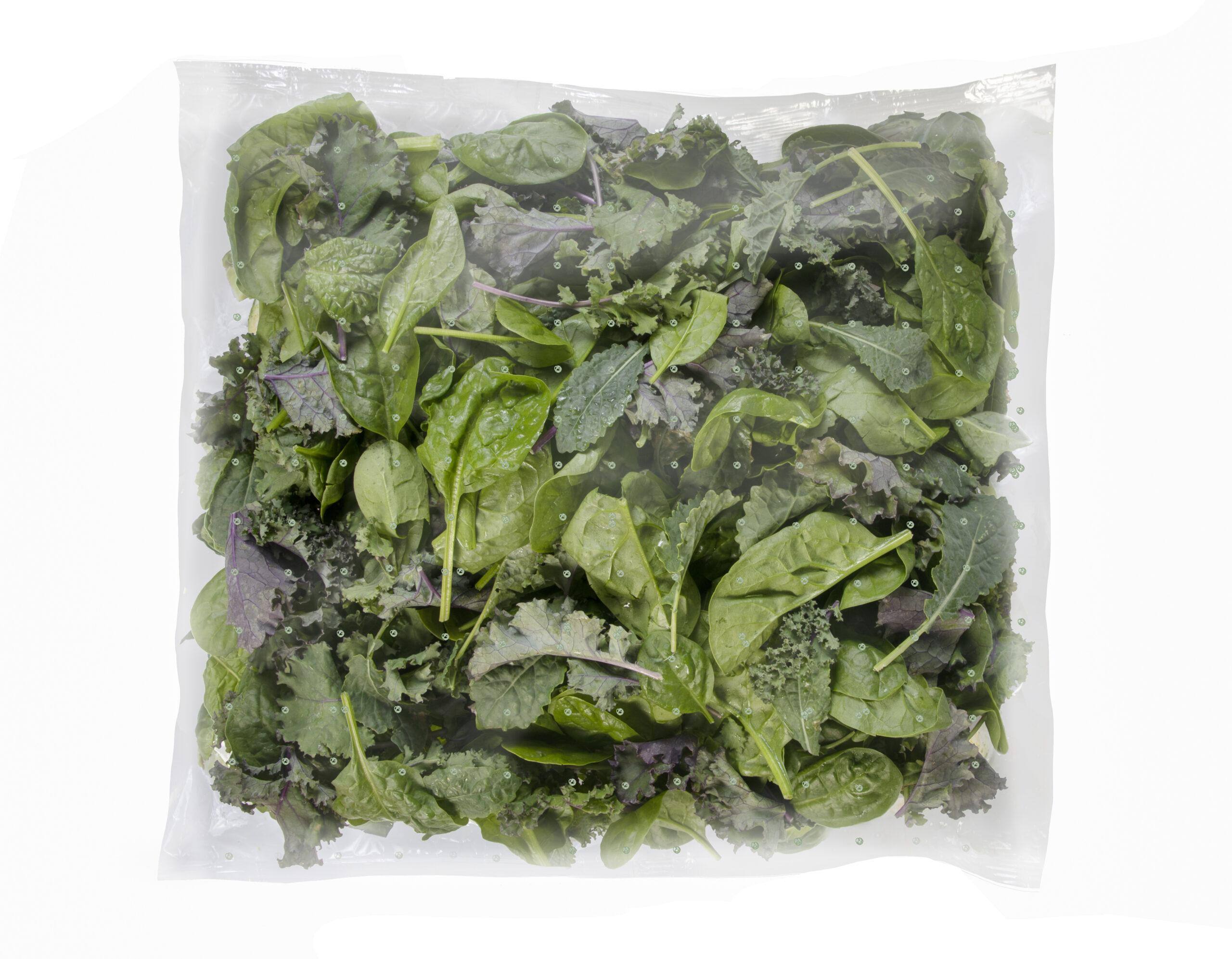 Foodservice Kale & Spinach blend